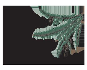 Pine Haven Camping Resort Logo